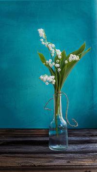 植物 静物 花瓶 蓝
