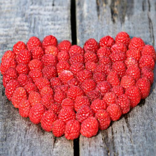心 覆盆子 董事会 爱情 成熟 莓果 红色 符号 幸福 关系 家庭