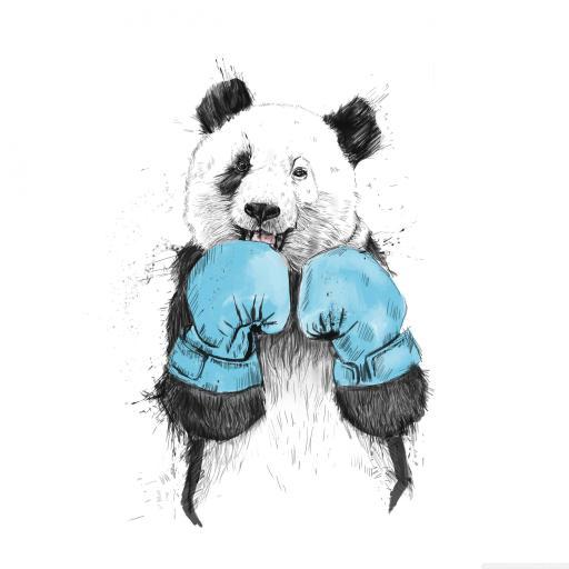 手绘拳击大熊猫