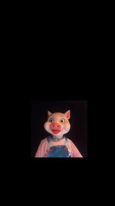 猪 猪头 粉色 黑色 动物