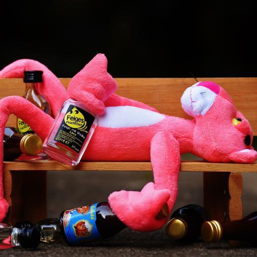 休息 坐 图 滑稽 动物 毛绒 毛绒动物 可爱 瓶