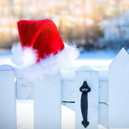 白色 圣诞 帽子 栅栏