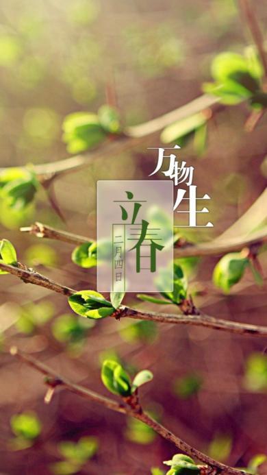 节日 立春 春天 万物生 树枝