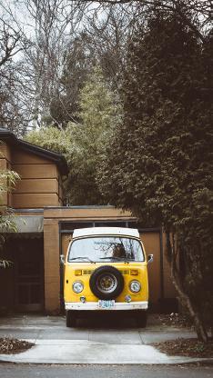 汽车 车尾 黄色 树林