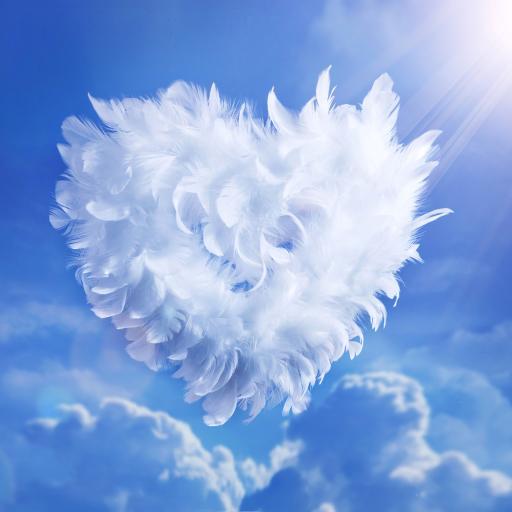 羽毛 拼凑爱心 蓝天