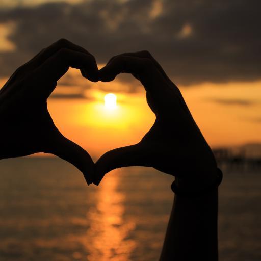 爱心 爱情 日落 大海 手势