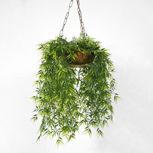 盆栽吊景 绿色 植物 装饰