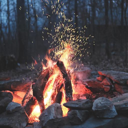 户外 火苗 篝火 烧烤 取暖 树林 野外
