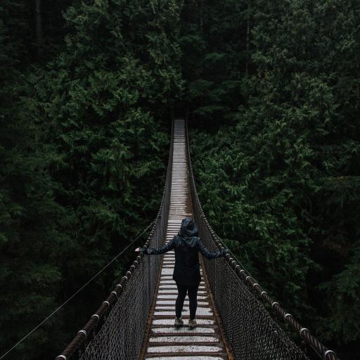 女子 索桥 大自然 风景 树林 高空