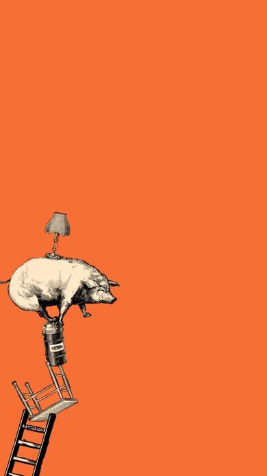 橙色背景 创意手绘插画 学杂技的猪