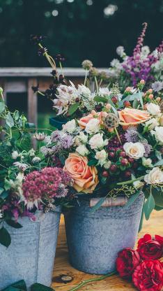 花 植物 玫瑰 花盆 花束 彩色 争艳