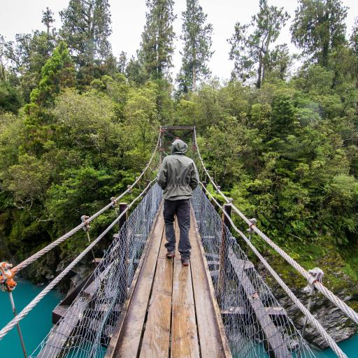 桥 徒步旅行 新西兰 霍基蒂卡峡谷 自然 水 蓝色 户外 森林 旅行 冒险