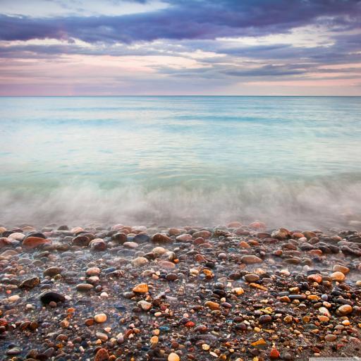大海 石头 石子 贝壳