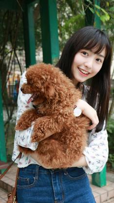 甜美笑容美女写真 抱着泰迪