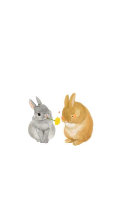 兔子 手绘 插画 爱心 情侣