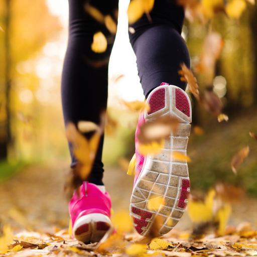 跑步 运动 体育 落叶 秋天