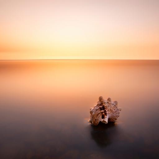 彩霞中的海螺
