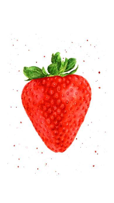 草莓 手绘 特写 鲜红