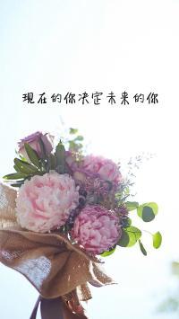 现在的你决定未来的你 鲜花 花束 浪漫