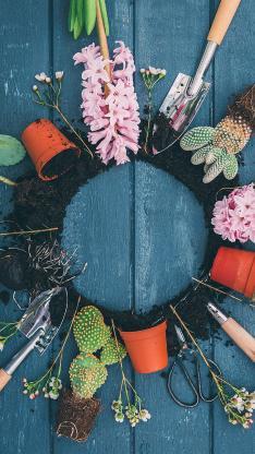 种植 花艺 仙人掌 鲜花 花盆 工具 泥土