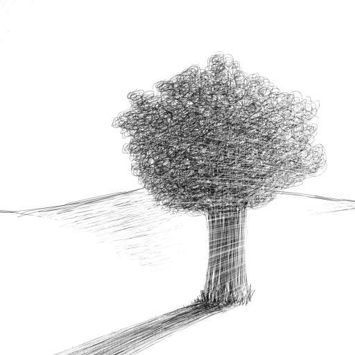 简笔画 树木 手绘  简约