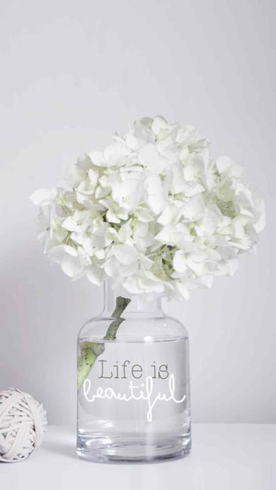 白色清雅脱俗 鲜花 花瓶