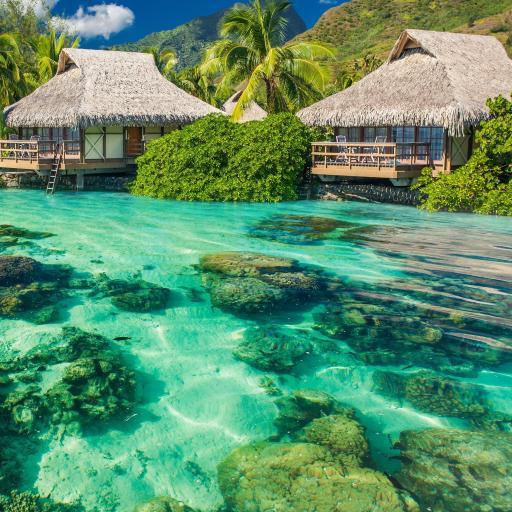 度假 唯美风景 海水清澈