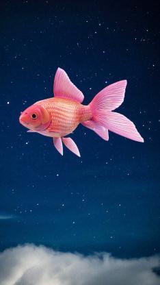 金鱼 粉色 天空 星空 云 唯美