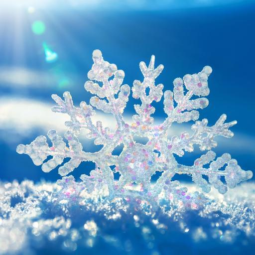 阳光 雪地 小雪花