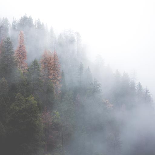 山林 风景 景色 山峰