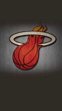 NBA 体育 热火 队标