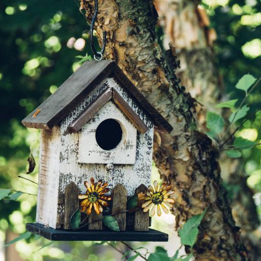 树干 小鸟木屋 装饰花朵