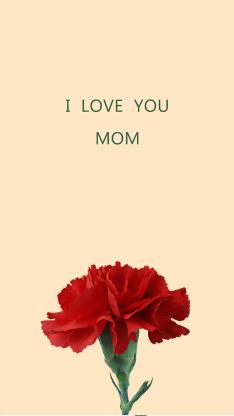 母亲节壁纸 康乃馨 I LOVE YOU MOM
