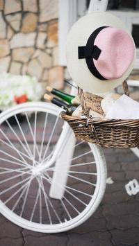 郊游 单车 帽子 红酒 粉色