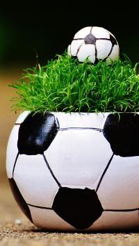 创意 盆栽 球 球场 草地 足球 场地