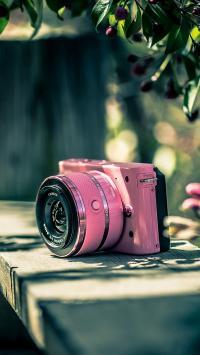 树荫下 粉色照相机 少女心