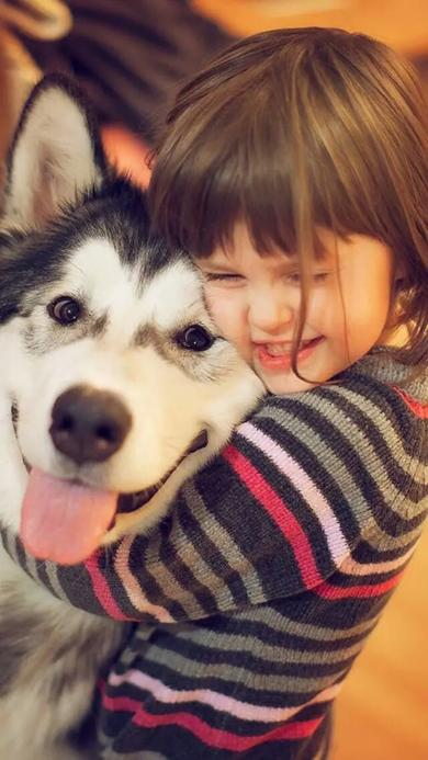 可爱呆萌的阿拉斯加犬与主人