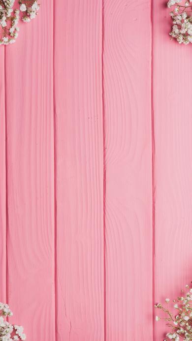 粉色木板背景 满天星鲜花  白色