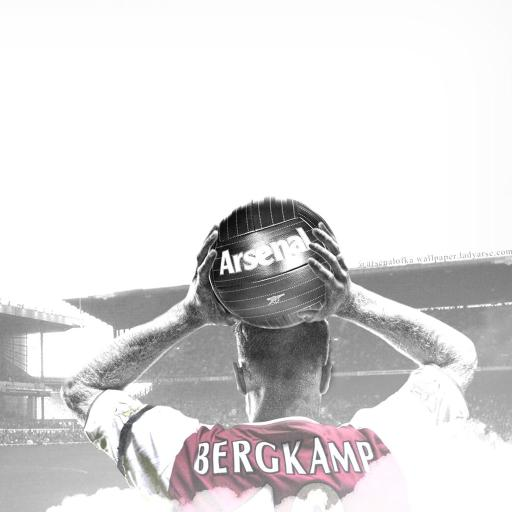 足球 体育 阿森纳 bergk