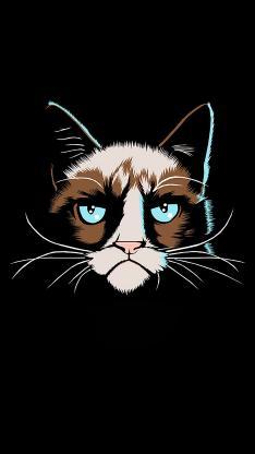 绘画 猫咪 手绘 卡通