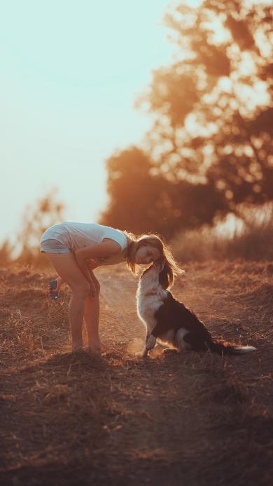 宠物 狗狗 户外 嬉闹 落日