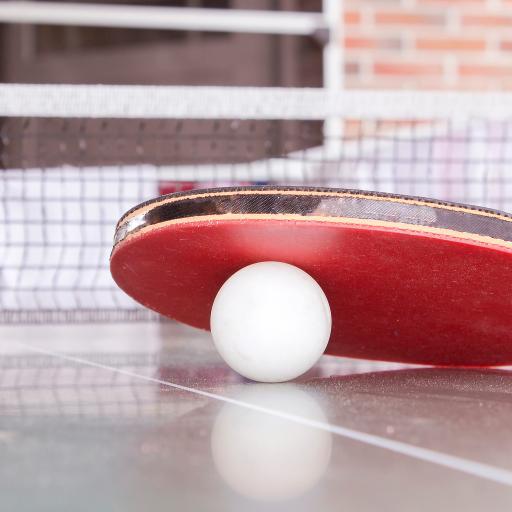 国球 体育运动 兵球拍 乒乓球