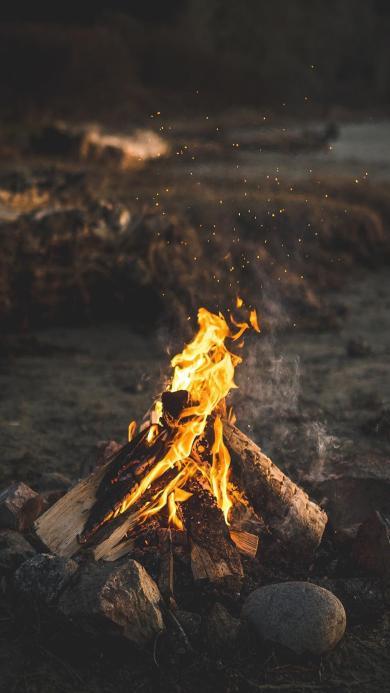 篝火 火焰  木材 夜晚 燃烧