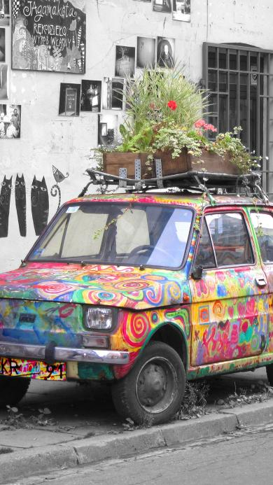 涂鸦 街头 废弃车 盆栽 废物利用