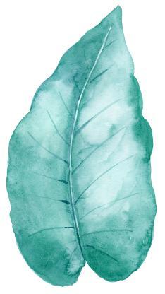 白色背景 手绘绿叶 晕染