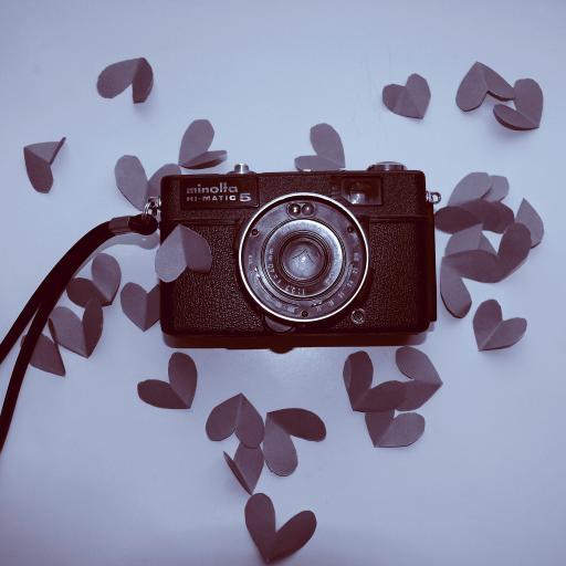 相机 爱心 花瓣 粉色