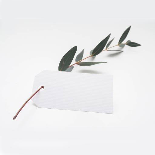 创意 绿叶 纸条 简约洁