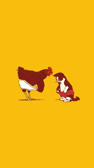 内裤 公鸡 猫咪 黄色 动物 幽默
