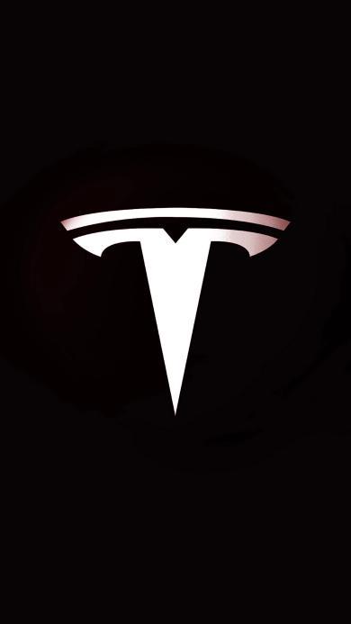特斯拉 标志 logo 黑白 汽车