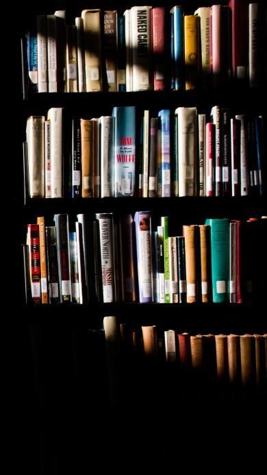 图书 书架 阳光